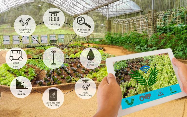 کاربرد اینترنت اشیا در کشاورزی