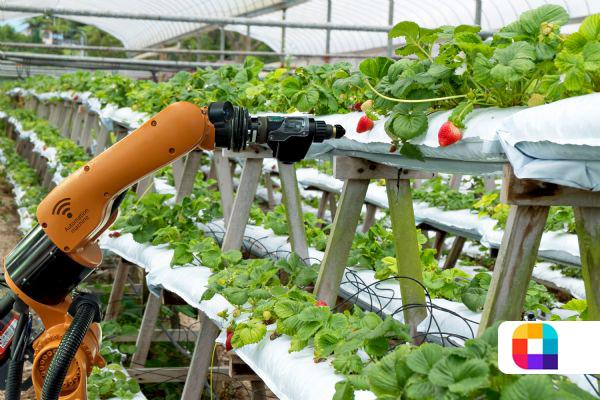 استفاده از ربات مراقب در گلخانههای هوشمند