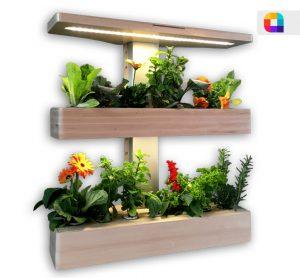 گلدان هوشمند دیواری با LED