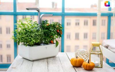 VERITABLE-smart-indoor-garden-864x576