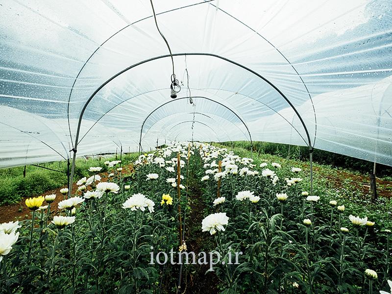 تکنولوژی گلخانه هوشمند