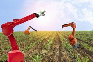 هوش مصنوعی و کاربردهای آن در کشاورزی