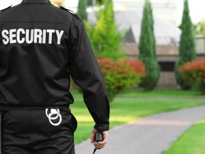 محافظ امنیتی