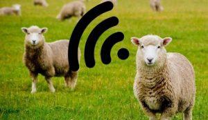 نقش اینترنت اشیا در صنعت کشاورزی