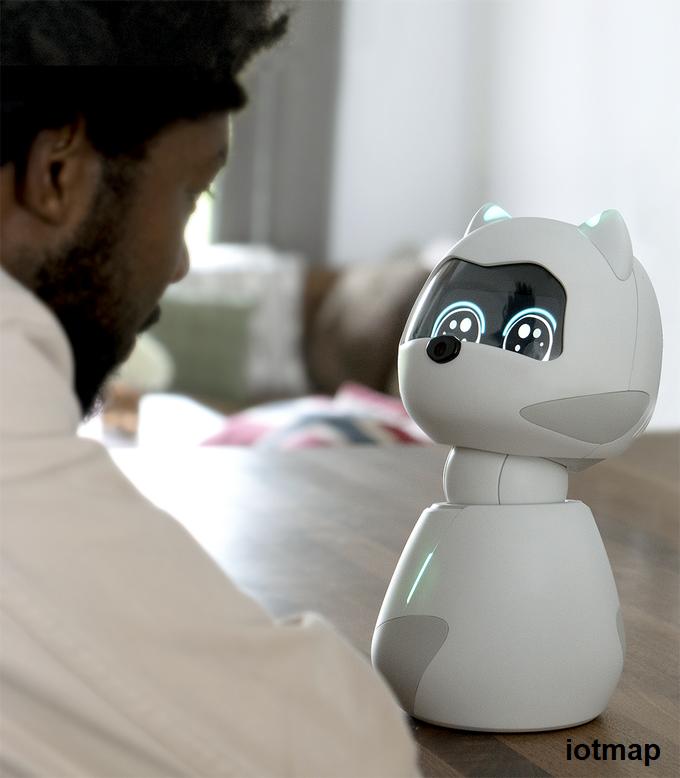 ربات هوشمند کیکی