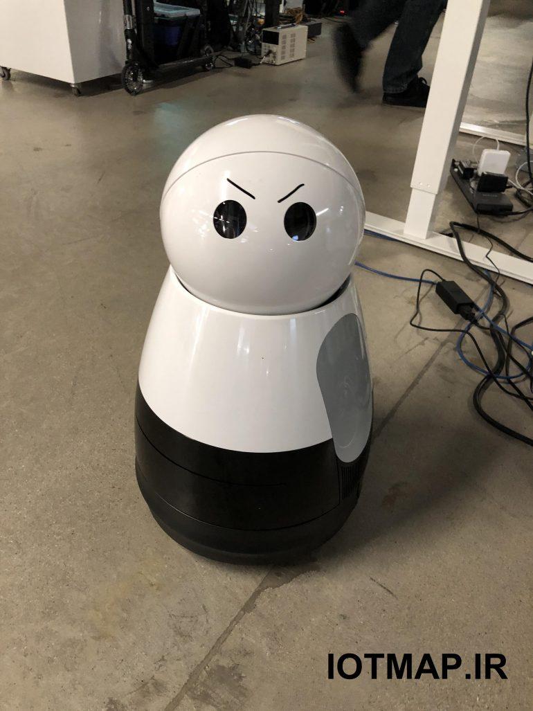 ربات kuri