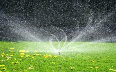 آبیاری هوشمند درختان و گیاهان شهری